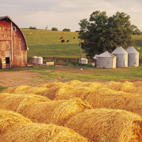 farmgirlstrong
