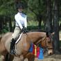 hg_equestrian