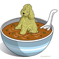 poodles_and_noodles