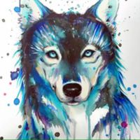 little_wolf_24