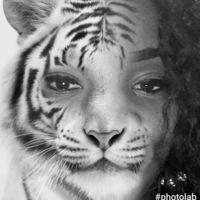 lioness82
