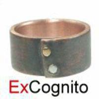 ExCognito