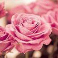 pinkKC